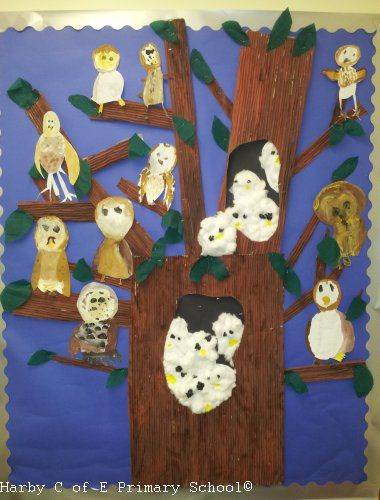 Owl Pictures Kids Art Gallery The Barn Owl Trust