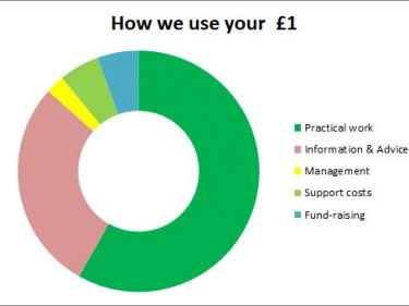 How We Use Your £1 2019