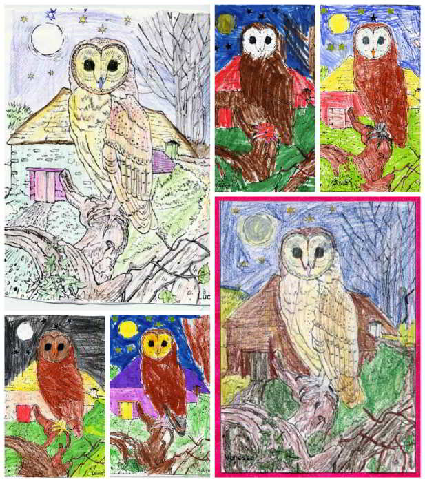 Hythe Hill Primary School Owl Collage