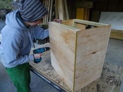 Indoor Barn Owl Nestbox Construction 09