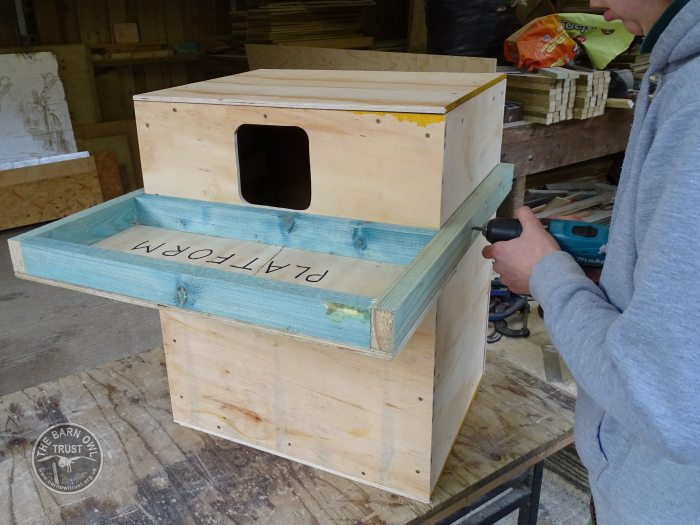 Indoor Barn Owl Nestbox Construction photo guide