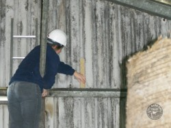 Indoor Barn Owl Nestbox Erection 11