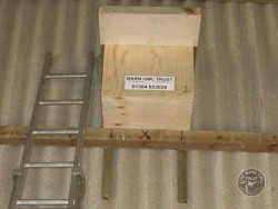 Indoor Barn Owl Nestbox Erection 12