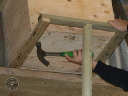 Indoor Barn Owl Nestbox Erection 22