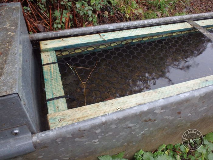 Kiln Close Water Trough Float In The LLP Wildlife Diary October 2015