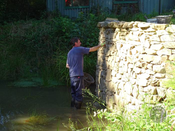 Kingfisher Wall Works LLP Wildlife Diary September 2016
