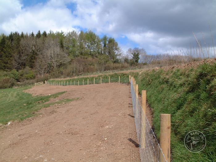 LLP North Park new hedge bank fenced and planted
