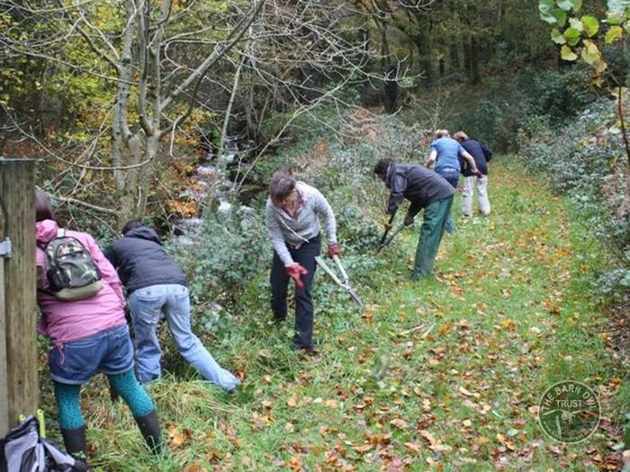 LLP__Plymouth_University Volunteers clearing scrub_James_Collins