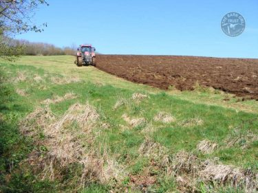 LLP Winter Bird Crop Ploughing LLP Wildlife Diary April 2018