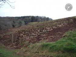 Lennon Legacy Project Stone Faced Hedge Re Creation 15