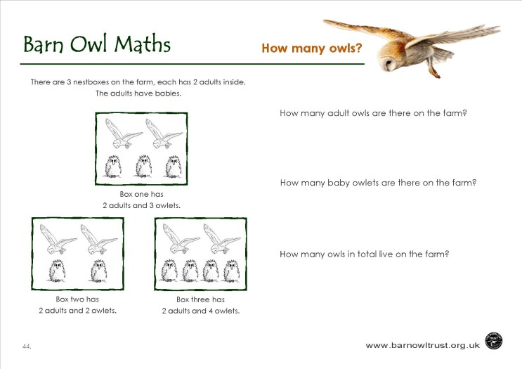 Barn Owl conservation: Numeracy educational resources ...