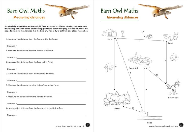 barn owl conservation numeracy educational resources the barn owl trust. Black Bedroom Furniture Sets. Home Design Ideas