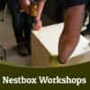 Nestbox workshops