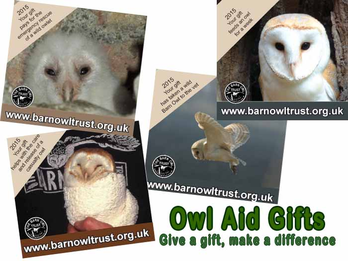 Owl Aid Magnets Ad