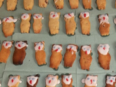 Owl Biscuits Brundall Primary School Fundraising Event