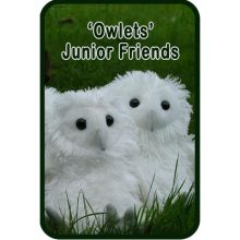 Owlets Junior Friends