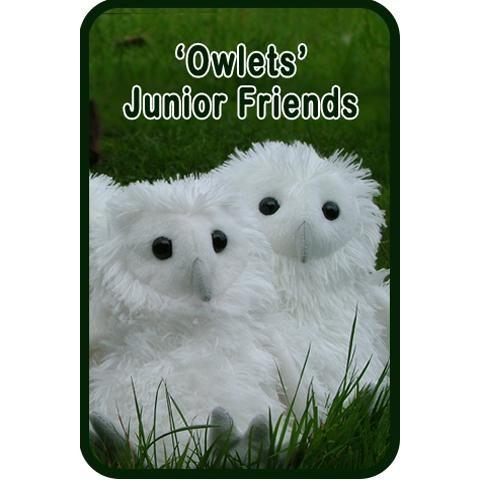 Owlets Junior Friends