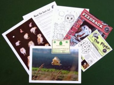 Owlets Kids Email Pack