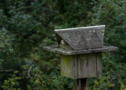 Polebox