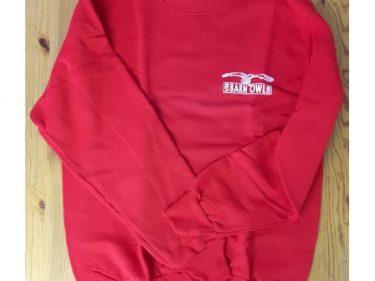 Red Small Square Logo Sweatshirt