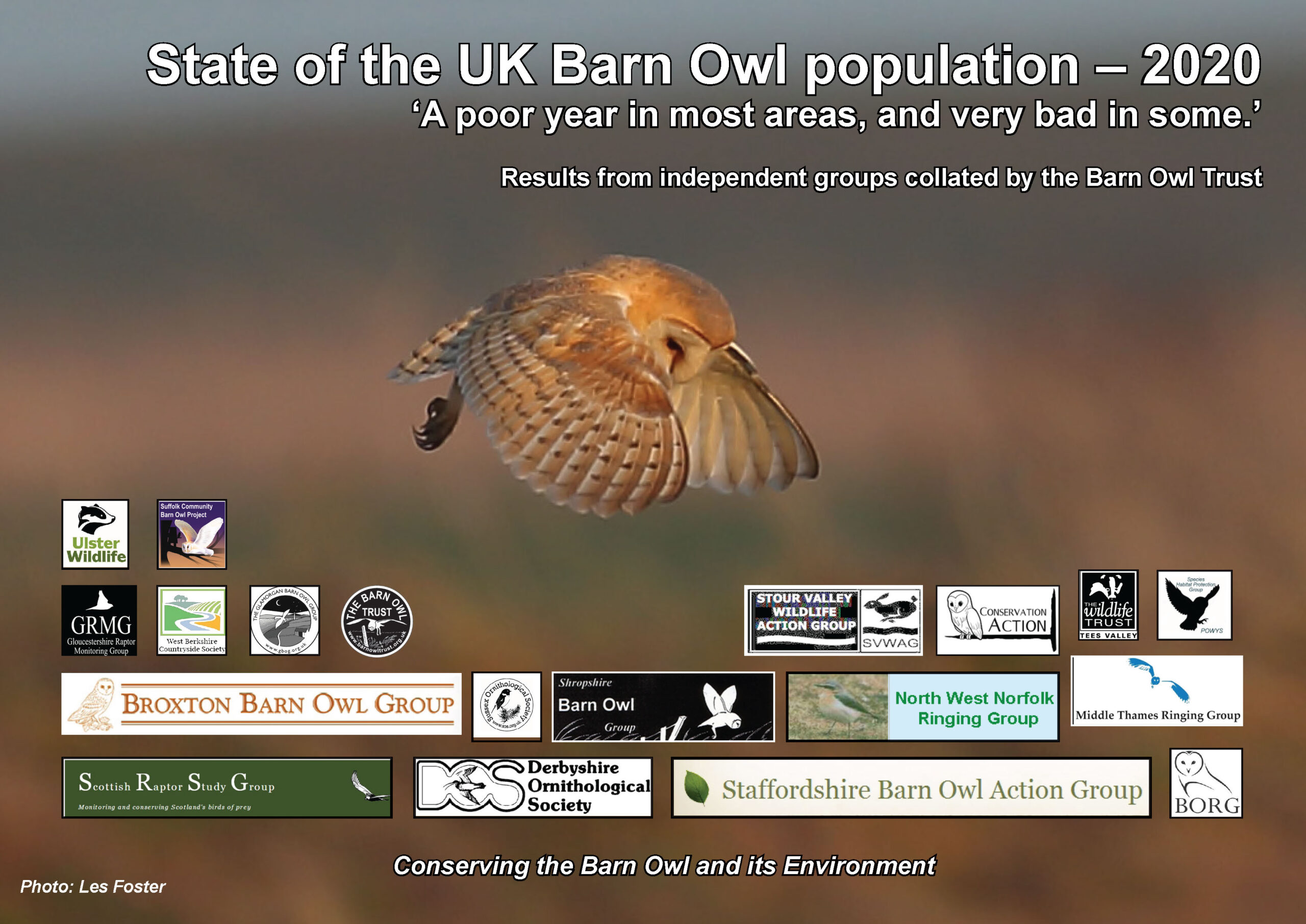 State of the UK Barn Owl Population 2020