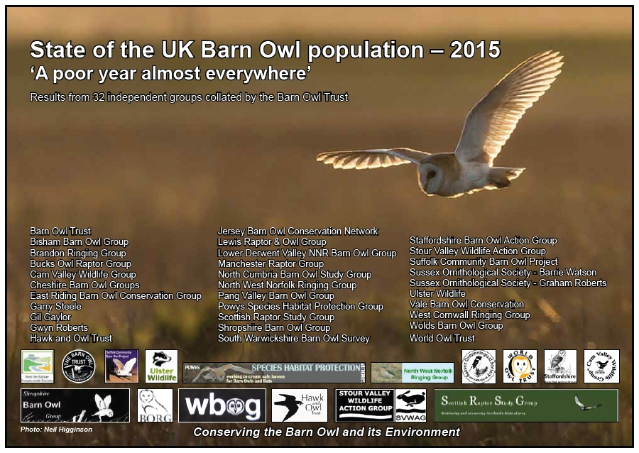 2015 UK Barn Owl numbers