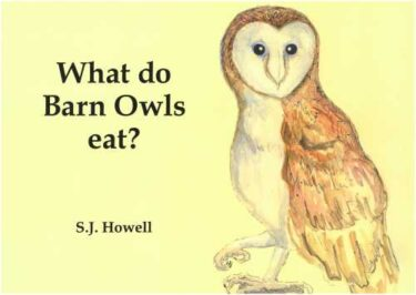 Simon howell book1