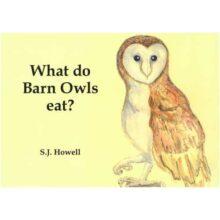Simon howell owl book