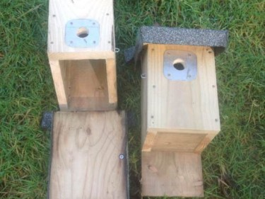 Small Bird Boxes One Open