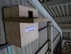 Where to put a Barn Owl nestbox in a building - The Barn ...