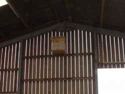 Suitable Positions Barn Owl Indoor Nestboxes 13