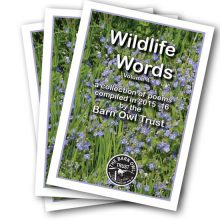 Wildlife Words poetry book Vol 4