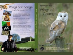 Wings Of Change DVD Cover