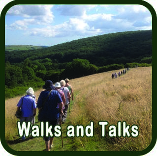Barn Owl Trust Walks & Talks