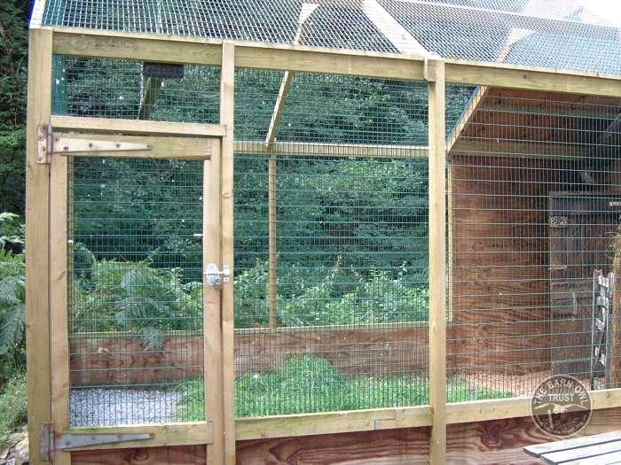 Aviaries For Barn Owls The Barn Owl Trust
