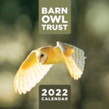 Barn owl trust calendar 2022