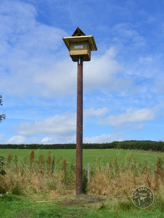Best Place Pole Barn Owl nestbox