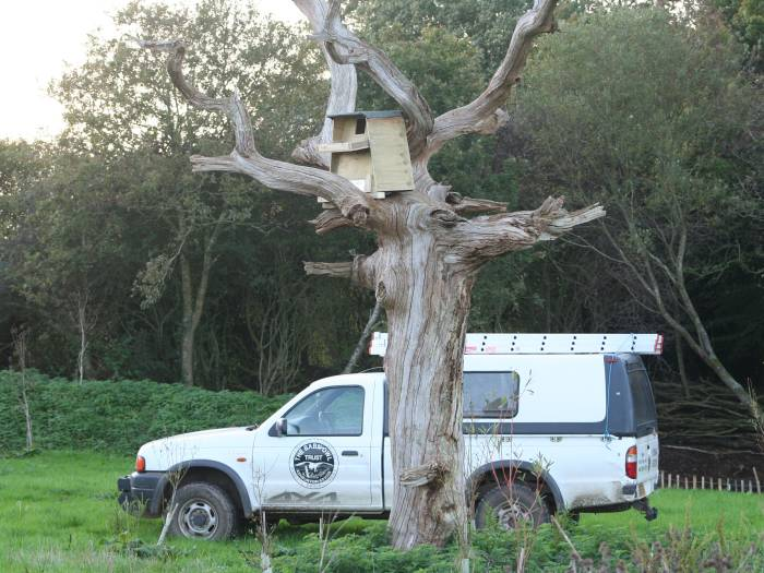 Barn Owl boxes for trees - The Barn Owl Trust