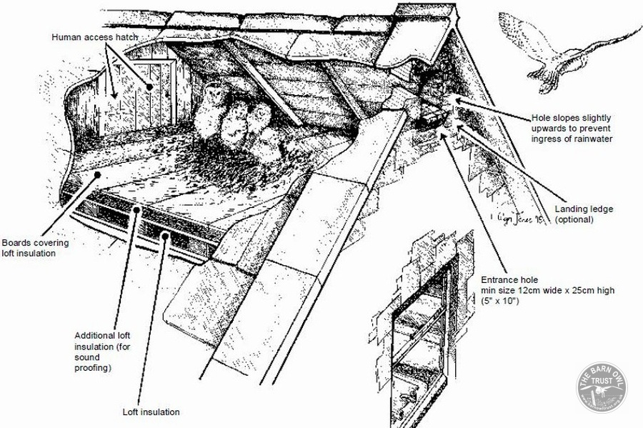 Building Projects Barn Conversion Annotated Drawing Full Size