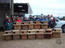 Campaigns Barn Owl Public Nestbox Building
