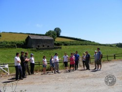 A local farm is used for practical experience - Barn Owl Trust courses