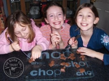 Cutting Up Chocolate Owl Crafts