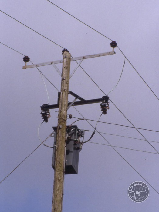 Electrocution Wires Electricity Pylon Stepdown Transformer