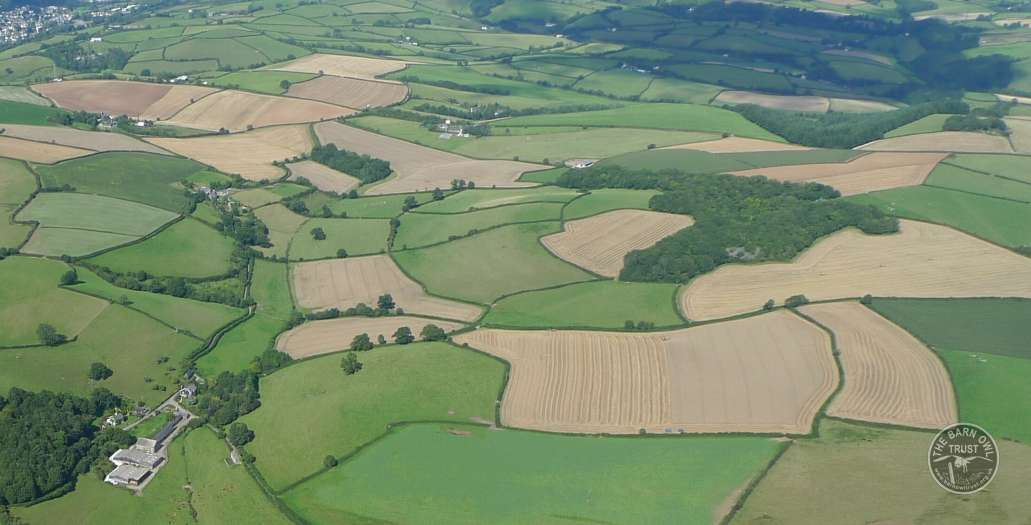 How Much Land Mixed Farmland Landscape