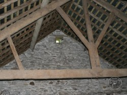 Indoor Barn Owl Nestboxes Entrance Hole Traditional Building