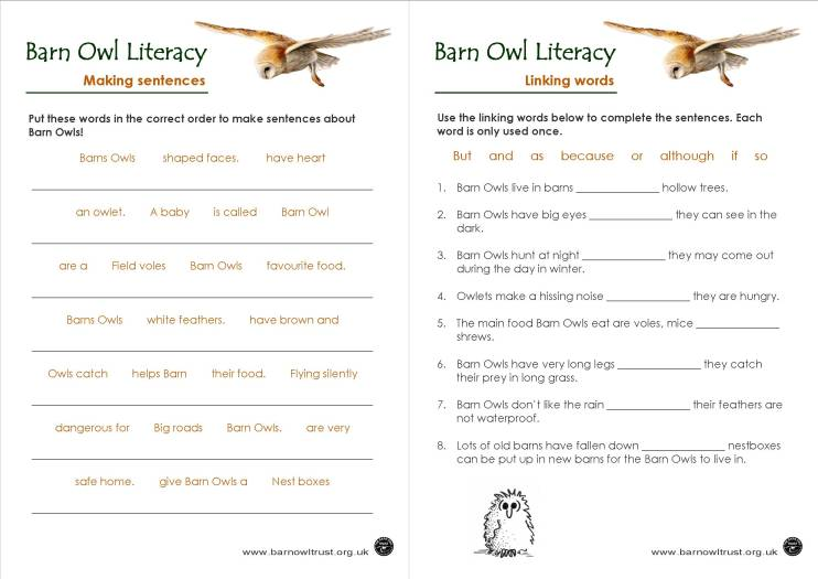 Barn Owl conservation Literacy educational resources The Barn – Owl Worksheets