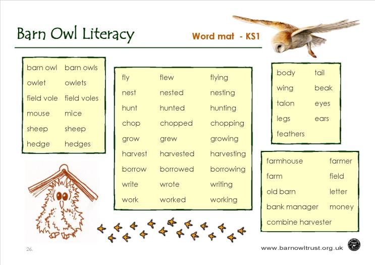 Barn Owl Conservation Literacy Educational Resources