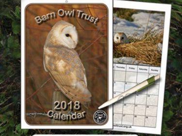 Owl Calendar 2018 Pen