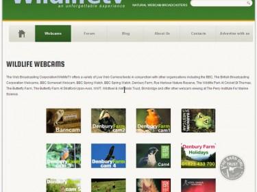 owl_cams_webcam_wildlifetv_home_page