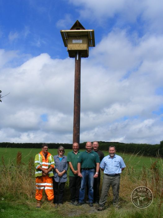Pole Nest Box People Erected